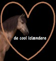 de cool islændere