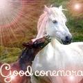 good connemara